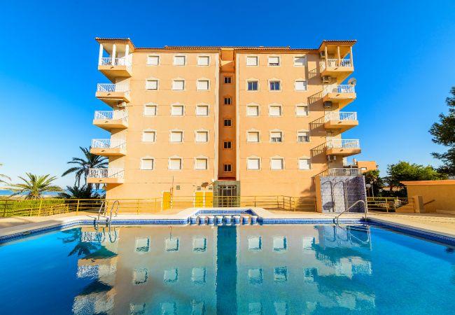 Апартаменты на Торревьеха / Torrevieja - Pleamar