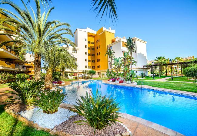 Апартаменты на Torrevieja - Paula