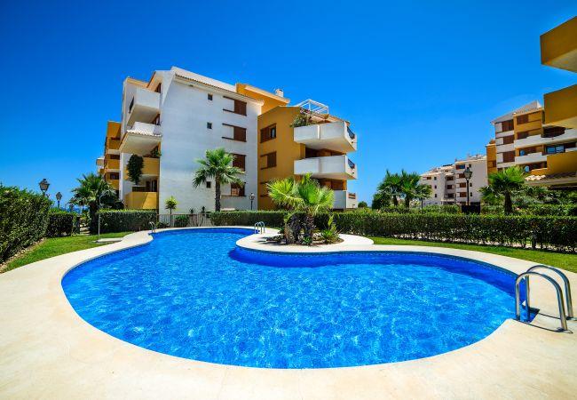 Апартаменты на Torrevieja - Amani