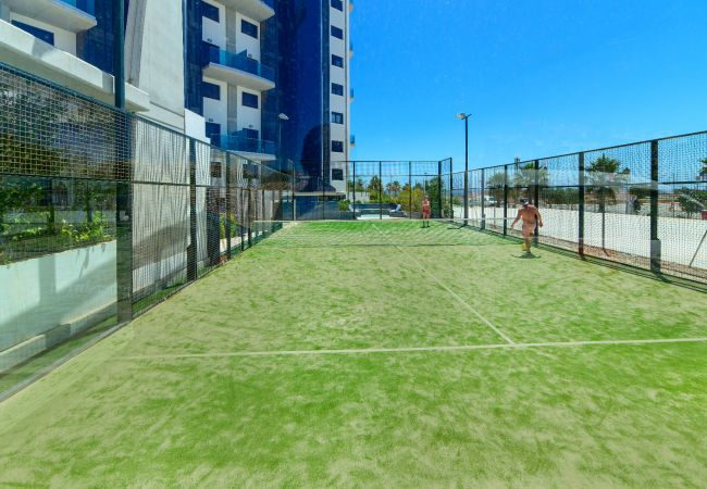 Апартаменты на Торревьеха / Torrevieja - Primavera