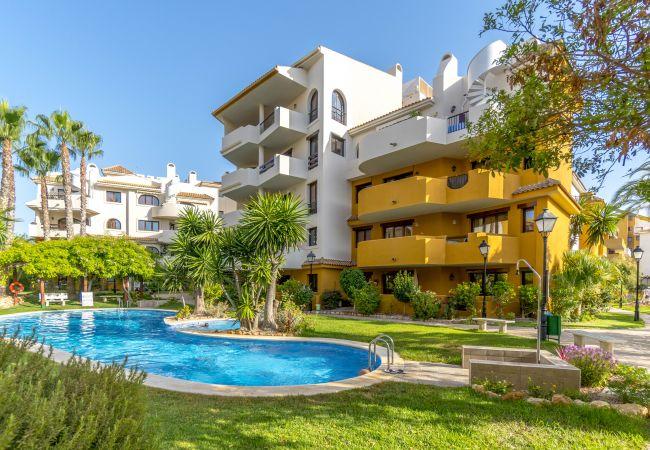 Апартаменты на Torrevieja - Luzmarina